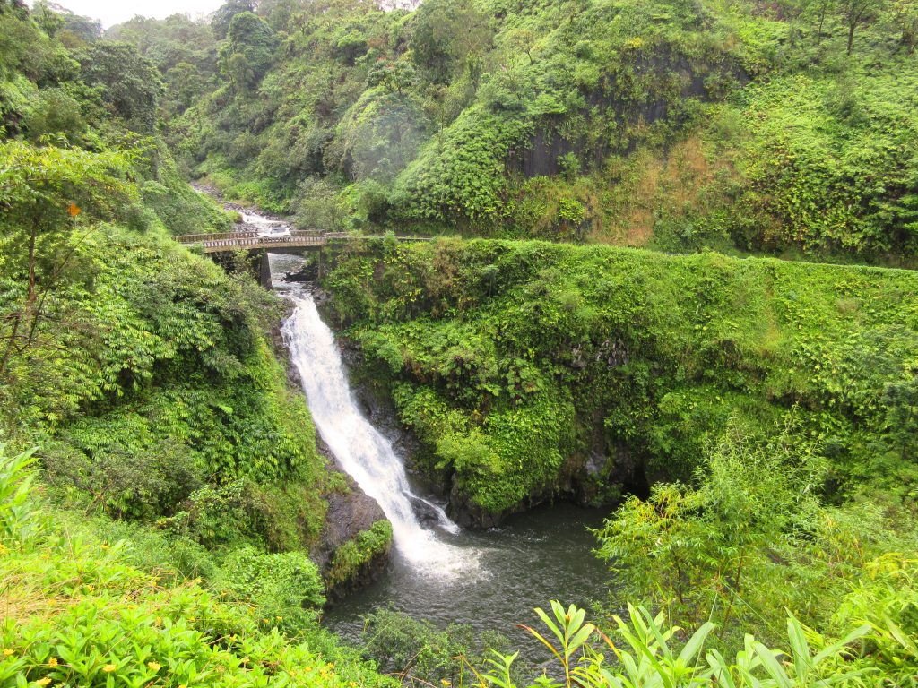 75b3ba53c8 Don t just take our word for it. On TripAdvisor  Hana Tours of Maui ...